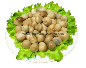 Mushroom Canned Straw Mushroom in Hot Selling pictures & photos