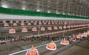 Automatic Poultry Farm Equipment for Broiler, Breeder, Layer Chicken pictures & photos