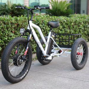 3 Wheel Electric Bicycle Tricycle with Small Cargo pictures & photos