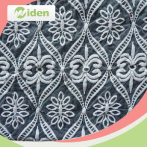 Nylon and Cotton Mesh Embroidery Lace Fabric with POM POM pictures & photos