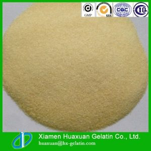New Product Food Grade Gelatin Powder pictures & photos