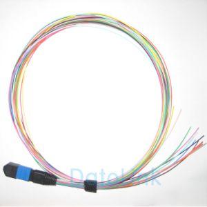MPO 12color Fiber Optic Pigtails pictures & photos