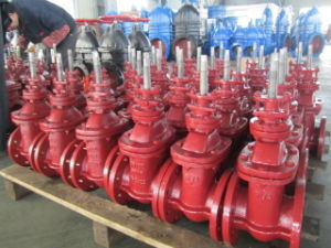 ANSI 125/150 Gate Valve with Rising Metal Seat