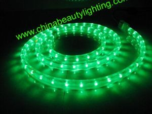 LED Light Flat Shape 2 Wires ETL LED Rope Light pictures & photos