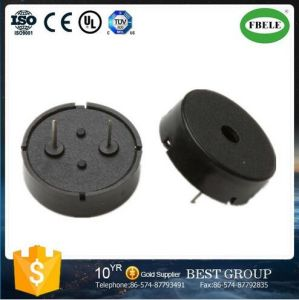 External Drived 12V Electric Piezo Buzzer pictures & photos