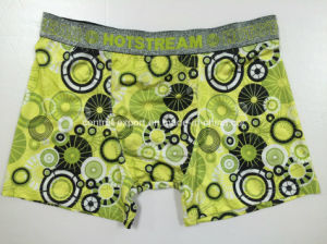 Allover Print New Style Men Underwear Boxer Short pictures & photos