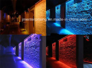 LED Bulb Outdoor Lighting Wall Washer pictures & photos