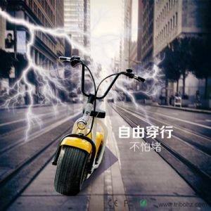 Electric Bike 8fun 500W Motor 1000W Electric Bike Kit