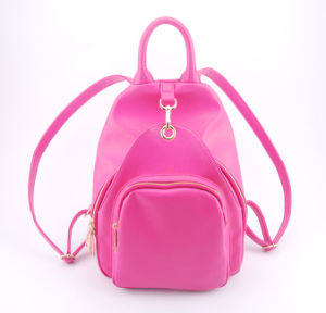 New Items Designer Casual Style Luxury Backpack (00537) pictures & photos