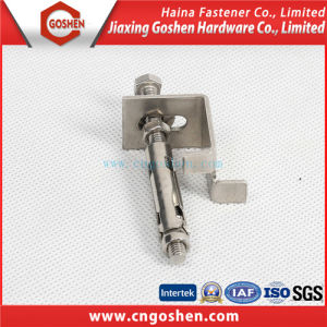 Ss304/ Ss316 Anchor, Wedge Anchor Bolt pictures & photos