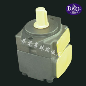 China Blince PV2r Rotary Vane Pump pictures & photos