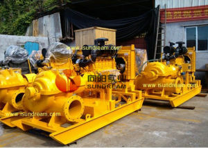 Tpow Double Suction Split Case Centrifugal Pump pictures & photos