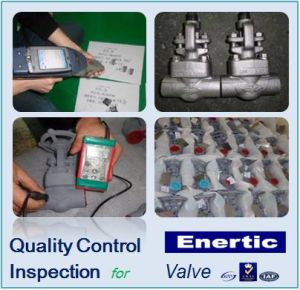 Quality Control and Inspection Service for Valve
