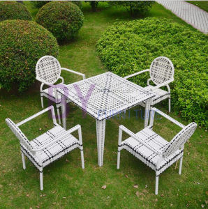 by-499 Commendatory Comfortable Table and Chair PE Furniture pictures & photos