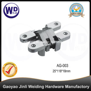 Zinc Alloy Concealed Gate Door Hinge, Cross Hinge AG-003 pictures & photos