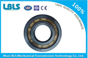 Nu315em Copper Cage Cylindrical Roller Bearing