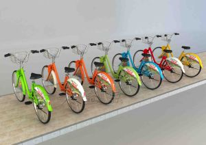 Public Bicycles-Shaft Drive Transission Bike pictures & photos