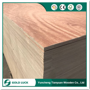 Two Times Hot Press Bintangor Face Finger Joint Core Plywood pictures & photos