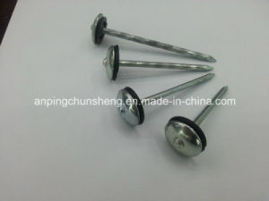 Roofing Nails with Dpem Washer pictures & photos
