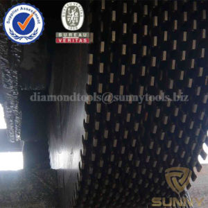1000mm Multi Diamond Saw Blade for Multi Cutting pictures & photos
