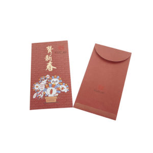 2017 Standard Size Money Pocket Bag pictures & photos
