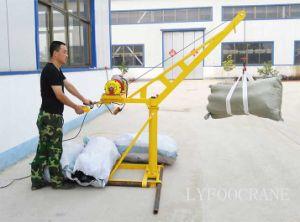 Inside Construction Mini Crane and Outside Construction Mini Crane 200kg 300kg 400kg 500kg pictures & photos