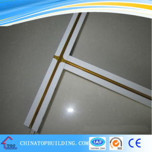 Groove/Fut Ceiling T Bar / T Grid for Ceiling Tile pictures & photos