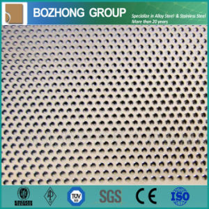 Industrial Punching Ss Plate Mesh Manufacturer pictures & photos