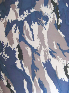600d Oxford Camouflage Printing Polyester Fabric for Military pictures & photos