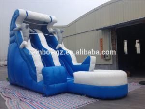 26.2*9.8*16.4FT or Custom Dolphin Jumbo Water Slide Inflatable pictures & photos