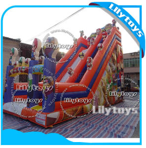 Inflatable Park Slide / Inflatable Bouncer Castle / Inflatable Jumping Park Slide for Sale pictures & photos