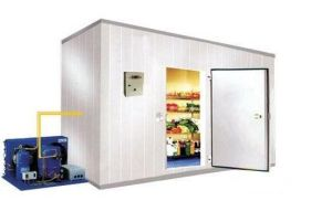 Food Garde Freezer for Seafood with pictures & photos