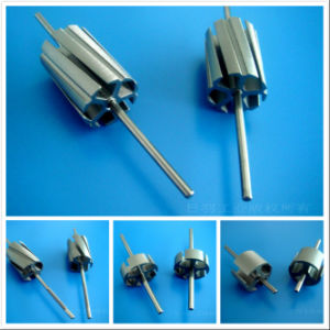 Factory Price High Quality Rotor for Micro DC Motor pictures & photos