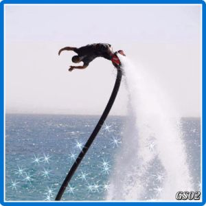 China Flyboard for Sale pictures & photos