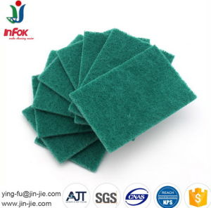 Heavy Duty Polyester Customized Scourer Pad pictures & photos