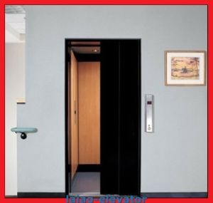 Vvvf Low Price Passenger Villa Home Lift Hot Sale pictures & photos