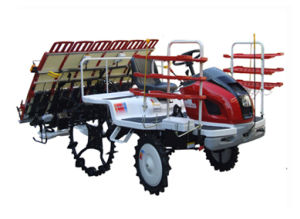 Hot Sale Flw 2zg-6dk Riding-Style Rice Transplanter pictures & photos