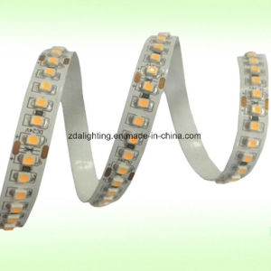 240LEDs/M 12V-24V SMD3528 Double Row 2200k-3000k Warm White LED Tape Light pictures & photos