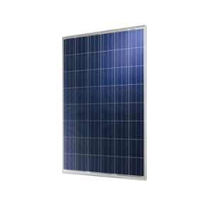 48 Cells Polycrystalline Solar Panel pictures & photos