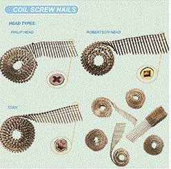 Electro Galv. Nails Coil Screw Nails pictures & photos