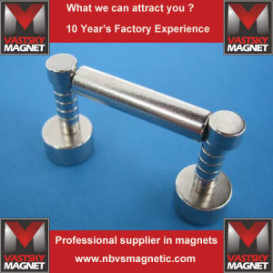 Magnet Neodymium Home Depot for Spain Italy France Czech pictures & photos