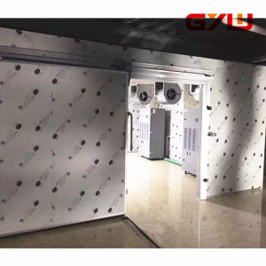 Gyw Customized High Temperature Drying Room pictures & photos