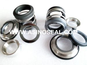 OEM Mechanical Seal as-92D-32mm Replace AES P07 pictures & photos