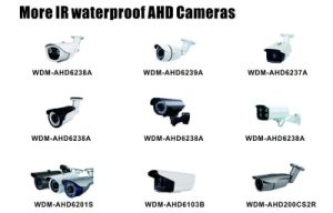 Security Network Wdm Fish-Eye 130° IR 1080P Waterproof IP Camera   pictures & photos