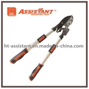 Power Drive Heavy Duty Ratchet Pruning Bypass Hand Loppers pictures & photos