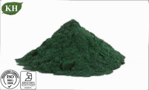 Natural High Quality Spirulina Powder Protein 60% pictures & photos