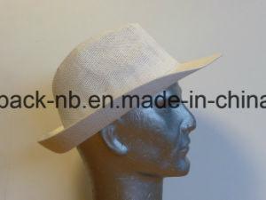 Equateur Hats White Panama Hat Spaper Straw Chapeau (CAP_60021) pictures & photos