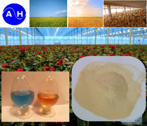 Pure Vegetable Source Amino Acid 52% 8-0-0 Amino Acid Factory pictures & photos