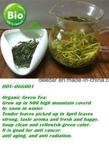 Green Organic Tea pictures & photos