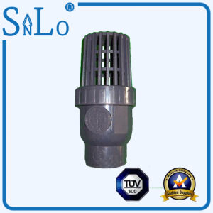 Water Level Ppv/PVC/UPVC Check Valve From China pictures & photos